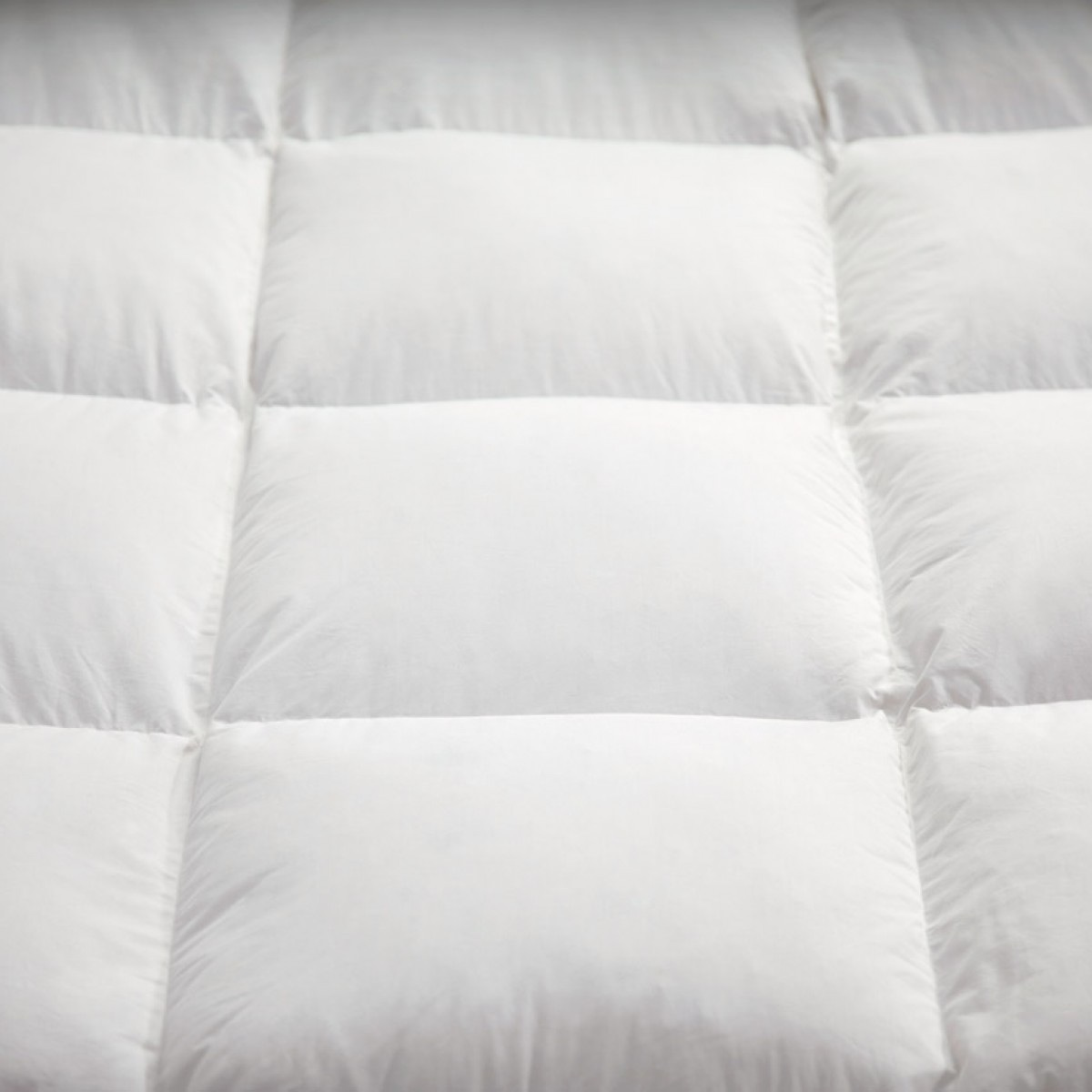 literary analysis of the feather pillow The feather pillow the one thing that has been throughout many people's lives is a pillow a pillow may be just a simple object for some people but after .